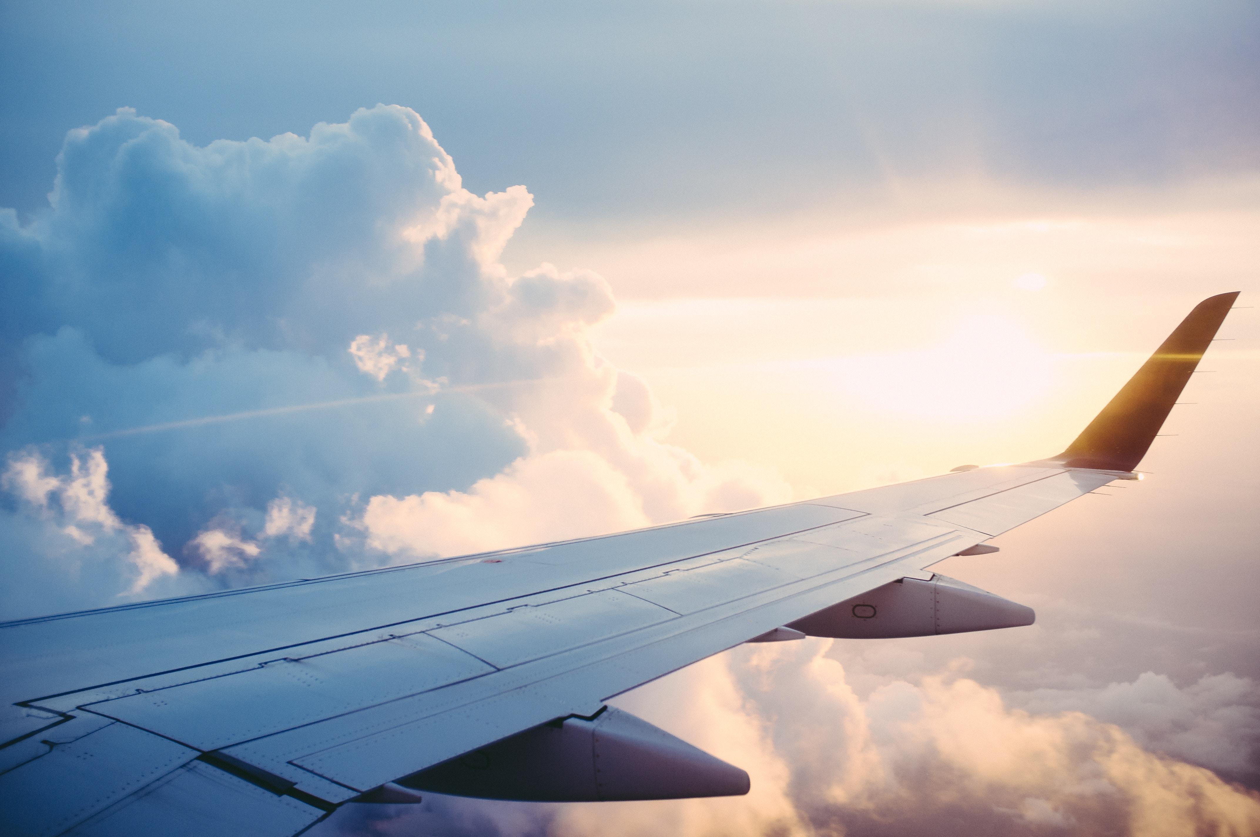 Delia Wings - Reisetipps einer Stewardess