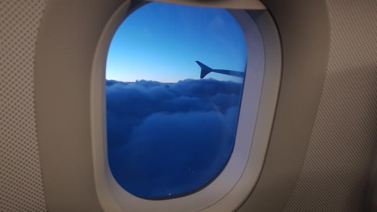 Flugbegleiter Leben