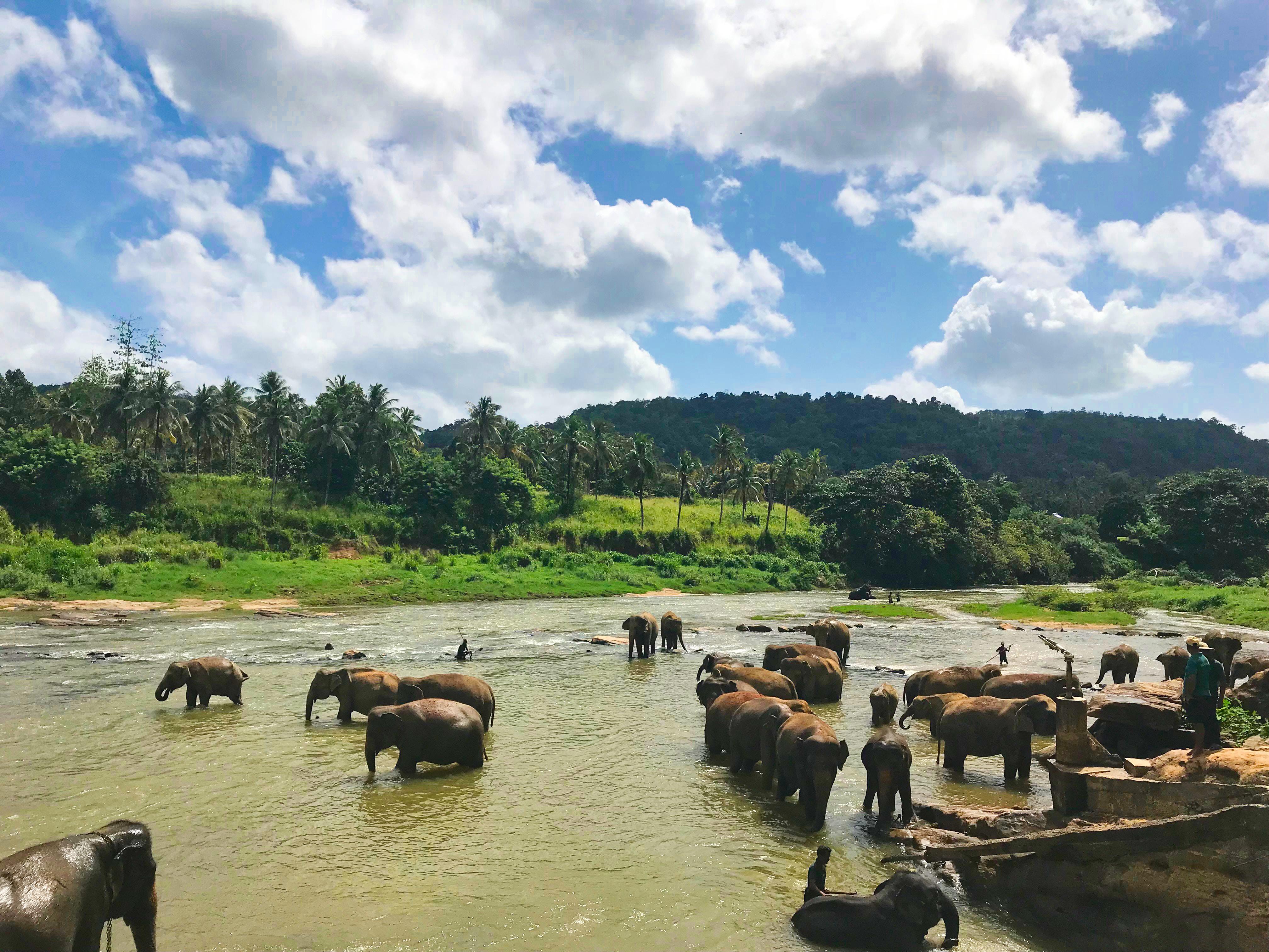 Die günstigsten Reiseziele der Welt - Sri Lanka
